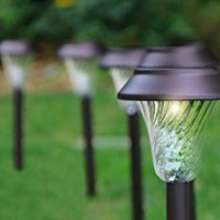Best Solar Pathway Lights